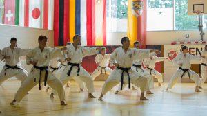 2016 07 Karate Neuhofen RothFudodachi